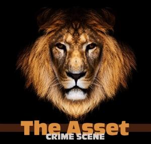 The Asset Crime Scene